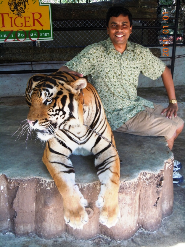 K Posing with the Tiger